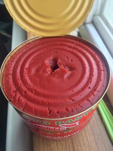 Ginny Brand Tomato Paste Condiment and Seasoning Sales Well pictures & photos