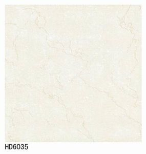 HD6035 Soluble Salt Polished Tiles 600X600 pictures & photos
