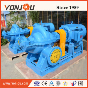 S Horizontal Hot Water Pump/High Pressure Water Pump/Booster Water Pump/Radially Split Casing Centrifugal Pump pictures & photos