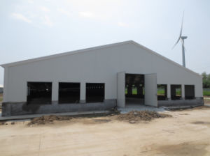 Prefabricated Poultry Shed for Broiler Production pictures & photos