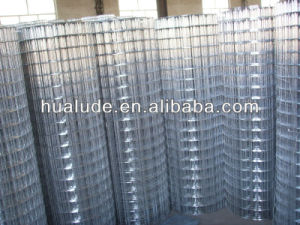 Hot DIP Galvanized Fence Wire Mesh pictures & photos