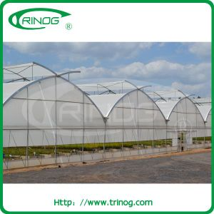 Commercial Multi-Span Film Greenhouse with modern appearance pictures & photos