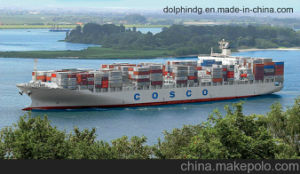 (Logistics) Freight Forwarder: LCL Ocean Shipping From China Seaport to Serbia.