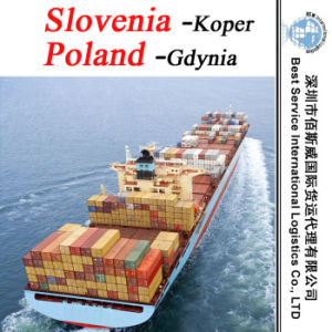 China Shipping Agent Koper (Slovenia) ; Gdynia (Poland) - FCL & LCL Container pictures & photos