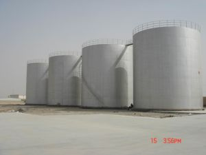 Competitive Complete Line of Vegetable Oil Refinery pictures & photos