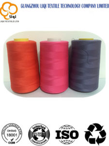 High Tenacity Polyester Brother Machine Embroidery Thread pictures & photos