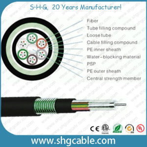 Outdoor Multi Loose Tube Fiber Optic Cable (GYTY53) pictures & photos