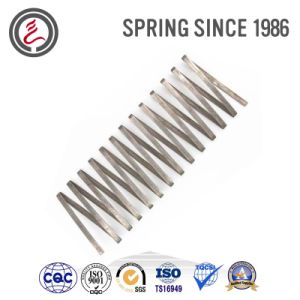Stainless Steel Spring (Elastic Element) for Production Lines pictures & photos