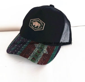 W-Shape Insert Embroidery Brushed Cotton Twill Racing Cap pictures & photos