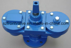 Cast Iron/Ductile Iron Single Ball Air Release Valve pictures & photos