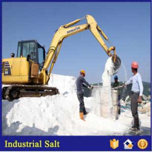 Sodium Chloride/Sea Salt/Industrial Salt