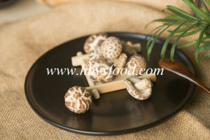 Top Sale 2.5-3cm Thin Tea Flower Mushroom Dry Vegetable pictures & photos