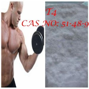 98% Steroid L-Thyroxine T4 for Muscles CAS: 51-48-9 pictures & photos
