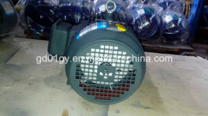 Cast Iron, IEC Standard 3 Phase Electric Motor for Sale pictures & photos