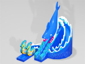 Shark Theme Inflatable Dry Slide for Sale (CHSL1100) pictures & photos