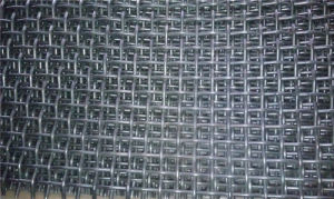 72b Screen Mesh Sold Hot in Mideast Market pictures & photos
