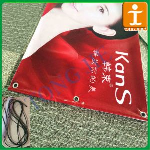 Factory Price Outdoor Flex Backlit Vinyl Banner for Outdoor Advertising pictures & photos