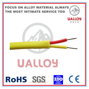Type E PVC Insulated/Braided Thermocouple Compensation Cable pictures & photos