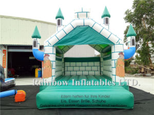 Commercial Inflatable Bouncer Castle for Sale (RB2013) pictures & photos
