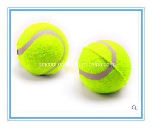 Dog Toy Dog Toy Ball pictures & photos