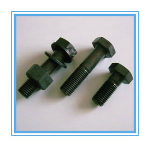 DIN931+DIN934+DIN125 Black Washer and Hex Nut and Hex Bolt pictures & photos