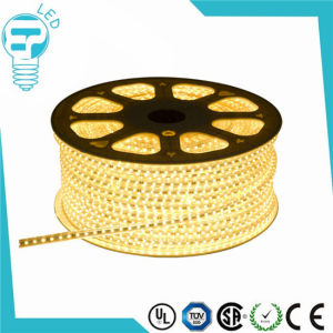 Hot Sale Super Bright 220V LED Flexible Strip/220V LED Strip pictures & photos