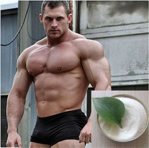 High Purity Nandrolone Undecylate CAS: 862-89-5 for Bodybuilder Supplement pictures & photos