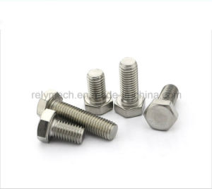 Stainless Steel 304 Hexagon Cap Screw/ Hexagon Bolt M12 pictures & photos