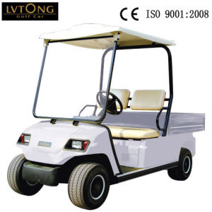 2 Person Electric Cargo Buggy for Airport Use pictures & photos