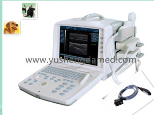 Ysd1300-Vet Veterinary Digital Portable Ultrasound Scanner System pictures & photos