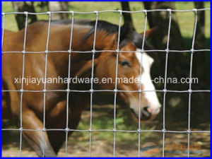 High Quality Hinge Joint Veld Span Wire Mesh Fence pictures & photos
