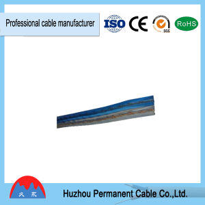 Transparent PVC Aluminum Conductor Flat Parallel Speaker Cable 10 AWG pictures & photos