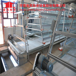 4 Tiers a Type Chicken Layer Cage pictures & photos