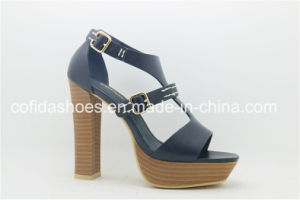 New Arrived Platform High Heel Lady Fashion Sandal pictures & photos