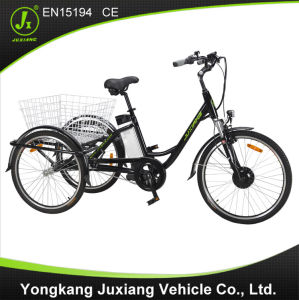 Light Alloy Frame Li-Battery Electric Cargo Tricycle pictures & photos