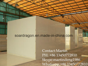 Fireproof Insulation Storage Cold Room for Meat pictures & photos