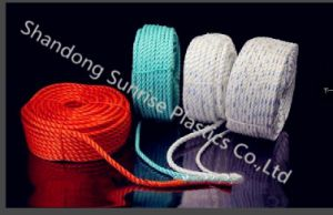 Low Price Good Quality PP Rope for Fishing pictures & photos