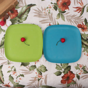 SGS Approved Eco Bamboo Fiber Kitchenwareware Plate (YK-P4011) pictures & photos
