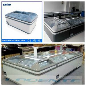 Electric Power Source and Chest / Deep Freezer Type Freezer pictures & photos