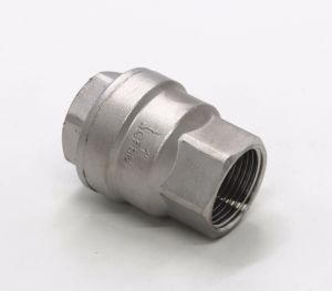 Stainless Steel 2PC Spring Check Valve pictures & photos