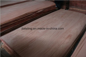 Bur Veneer with Cheap Price pictures & photos
