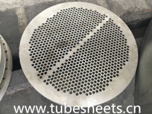 Hot Selling High Quality Tube Sheet pictures & photos