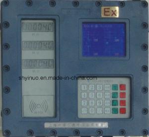 Batch Controller (PSYN-400) pictures & photos