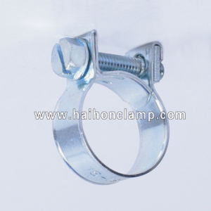 Galvanized Steel Mini Hose Clamp pictures & photos