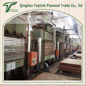 Anti-Slip Film Faced Plywood/ Eucalyptus Plywood / Concrete Plywood/ Antislip Plywood pictures & photos