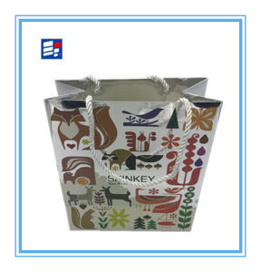 OEM Custom Gift Bag with Silver Foil Paper pictures & photos