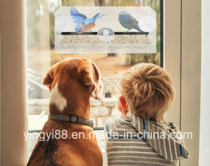 Yyb Premium Window Bird Feeder with Life Guaranteed pictures & photos