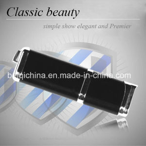 Classic Beauty USB Flash Drive for Promotion Gift pictures & photos