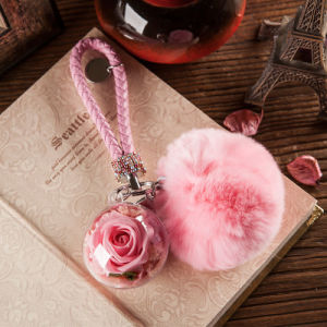 Promotion Preserved Flower Keychain for Gift pictures & photos