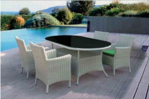 Outdoor Leisure 4+1/6+1 Table and Chair pictures & photos